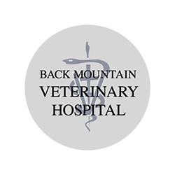 Back Mountain Veterinary Hospital